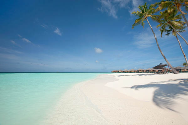 Maldivian paradise of constance halaveli alldaychic for White sand beach vacations