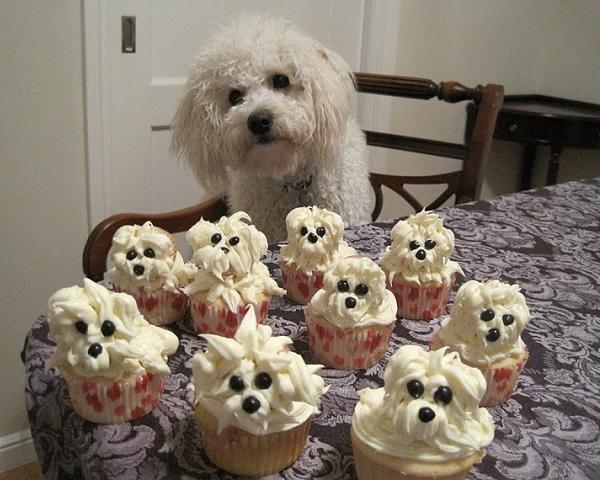 Dog Puppy Cupcakes Recipe