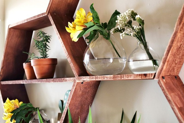 The Honeycomb Shelves (4)
