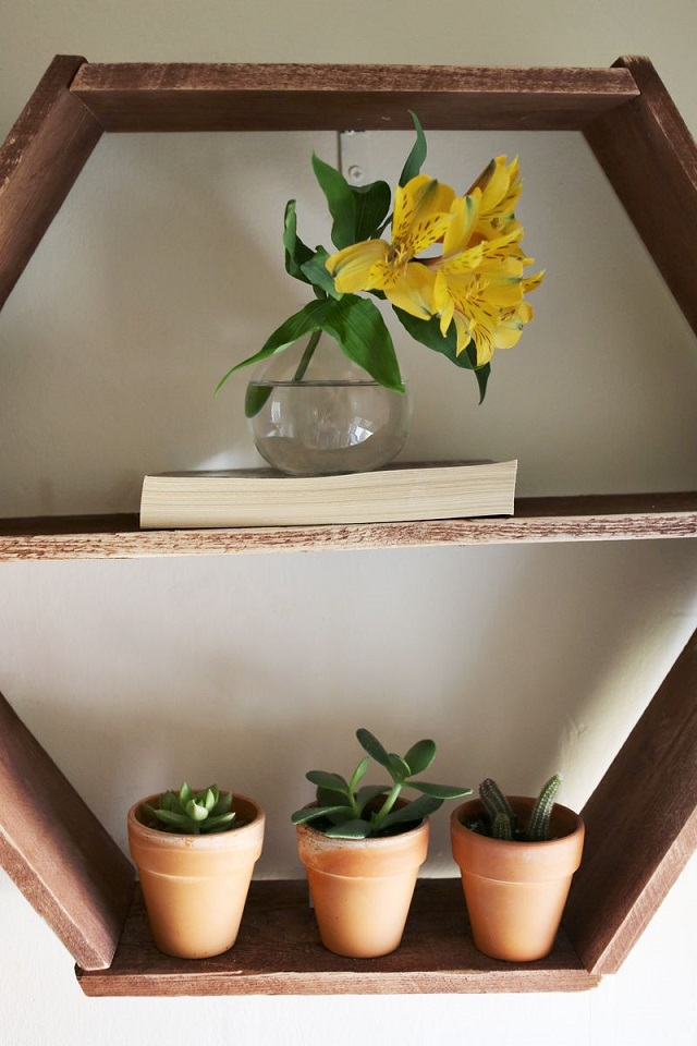 The Honeycomb Shelves (5)