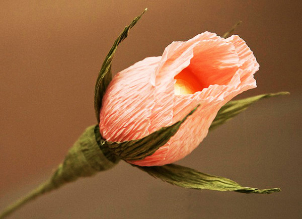 diy-rose-bud-crepe-paper-ferrero-rocher-chocolate