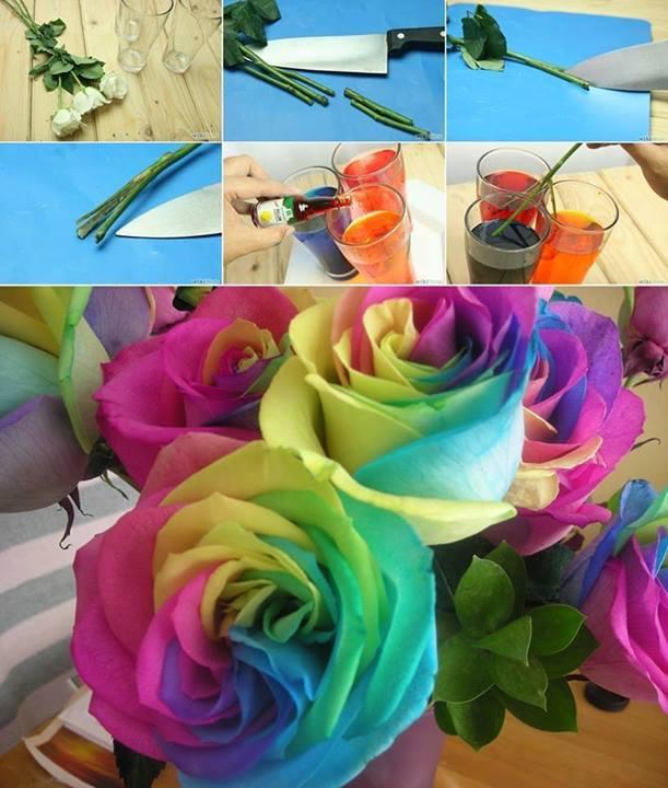 rainbow roses diy alldaychic