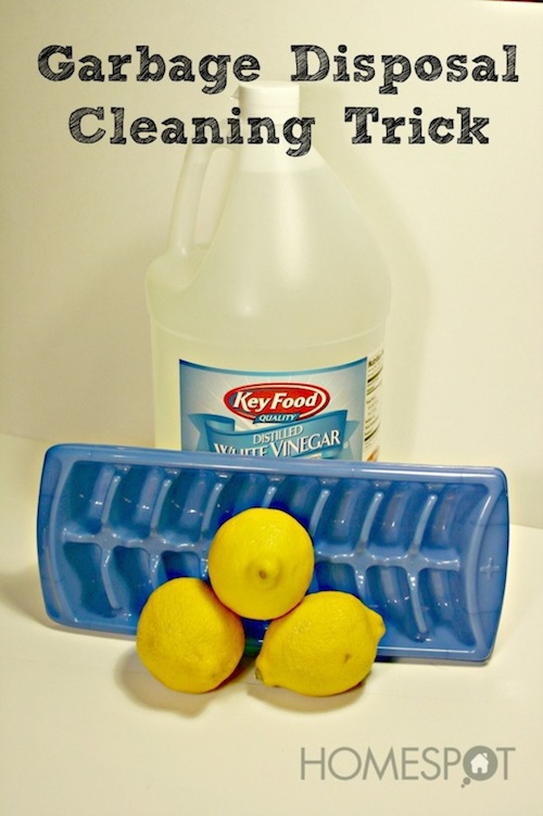 Cleaning Tips & Tricks-Garbage Disposal Cleaning Trick
