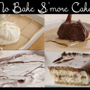 Delicious No Bake S'more Cake