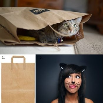 Last Minute Funny Halloween Costume Ideas