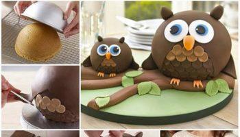 Owl Cake – DIY Recipe