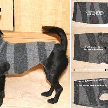 How-To-Make-A-Chic-Dog-Sweater-DIY-1
