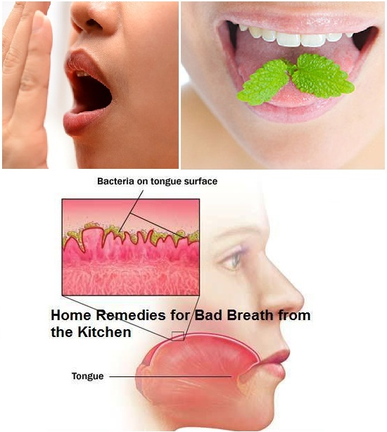 How To Know If U Have Bad Breath