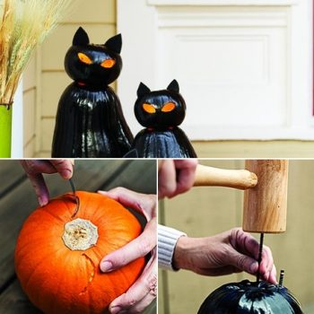 Cat O'Lanterns for Halloween in 6 Easy Steps