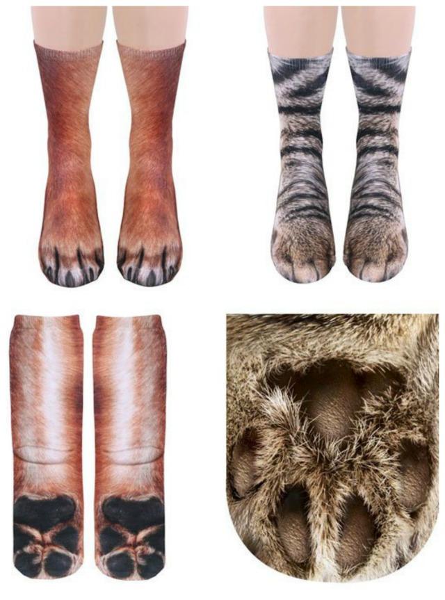 Sock On Dog S Paw