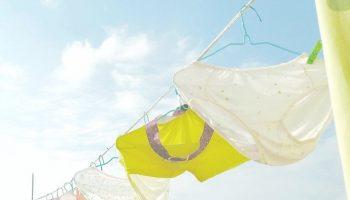Indispensable Undergarments for Women 1